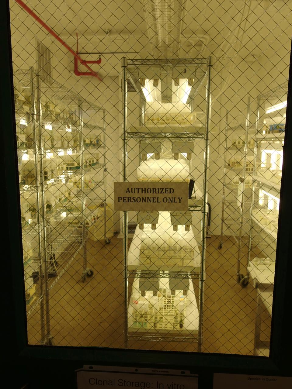 20C Tissue Culture Room